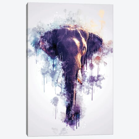 Elephant Head Canvas Print #CVL126} by Cornel Vlad Art Print