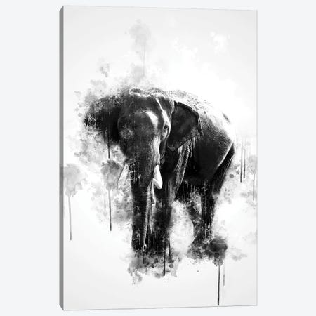 Elephant In Black And White 3-Piece Canvas #CVL128} by Cornel Vlad Canvas Art