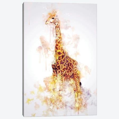 Giraffe Canvas Print #CVL132} by Cornel Vlad Canvas Print