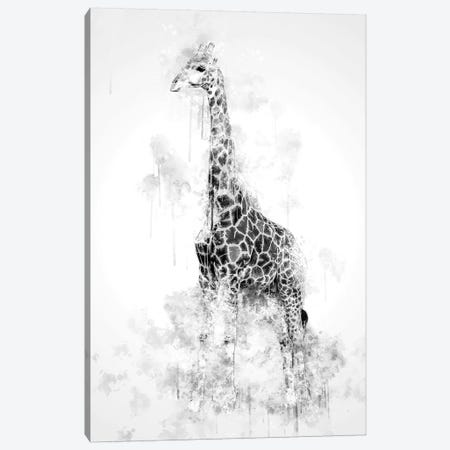 Giraffe In Black And White Canvas Print #CVL133} by Cornel Vlad Art Print