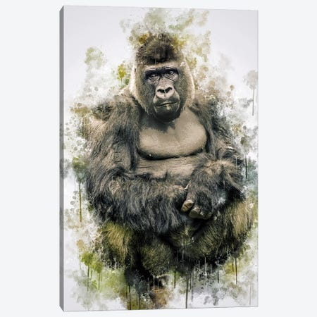 Gorilla Canvas Print #CVL134} by Cornel Vlad Canvas Wall Art