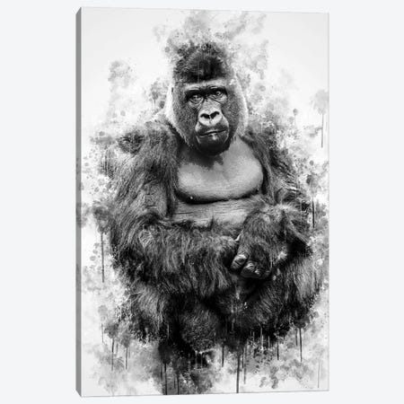 Gorilla In Black And White Canvas Print #CVL135} by Cornel Vlad Canvas Artwork