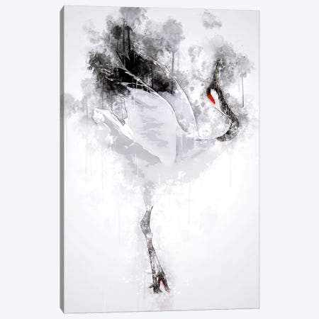 Japanese Red Crowned Crane Canvas Print #CVL139} by Cornel Vlad Canvas Print