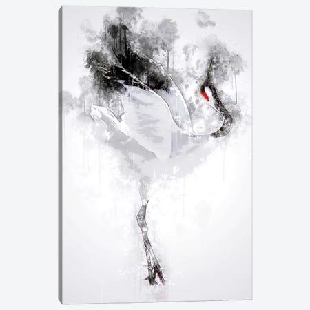 Japanese Red Crowned Crane Canvas Print #CVL139} by Cornel Vlad Canvas Print