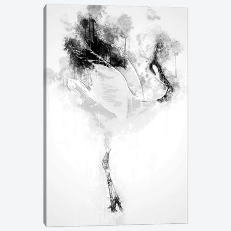 Japanese Red Crowned Crane In Black And White Canvas Print #CVL140} by Cornel Vlad Canvas Art