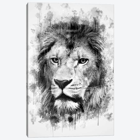 Lion Head Canvas Print #CVL143} by Cornel Vlad Canvas Art