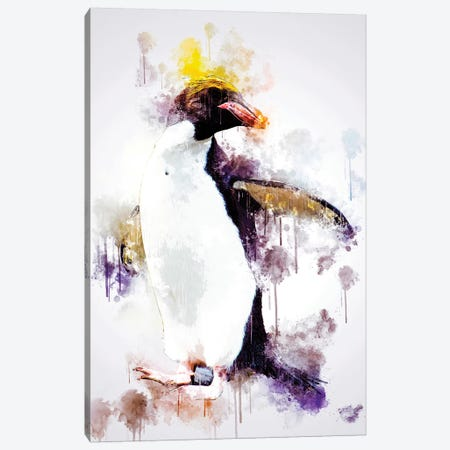Macaroni Penguin Canvas Print #CVL144} by Cornel Vlad Canvas Print