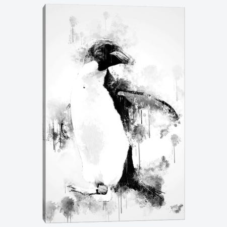 Macaroni Penguin In Black And White Canvas Print #CVL145} by Cornel Vlad Canvas Print