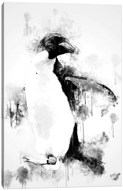 Macaroni Penguin In Black And White Canvas Art Print