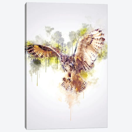 Owl Canvas Print #CVL147} by Cornel Vlad Canvas Art Print