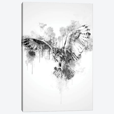 Owl In Black And White Canvas Print #CVL148} by Cornel Vlad Canvas Wall Art