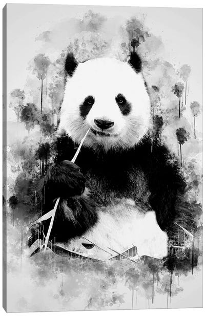 Panda In Black And White Canvas Art Print