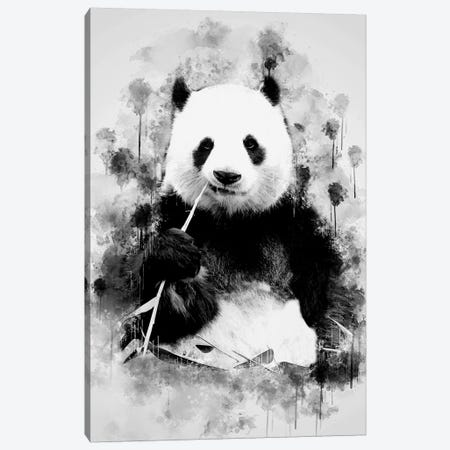 Panda In Black And White 3-Piece Canvas #CVL150} by Cornel Vlad Canvas Print