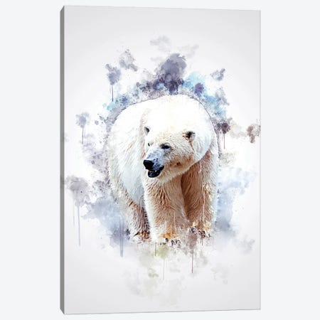 Polar Bear Canvas Print #CVL151} by Cornel Vlad Canvas Art Print