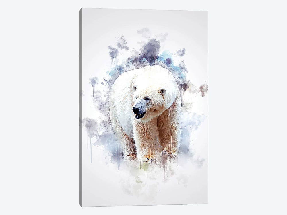 Polar Bear by Cornel Vlad 1-piece Canvas Wall Art