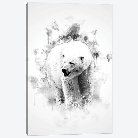 Polar Bear In Black And White Canvas Print #CVL152} by Cornel Vlad Canvas Print