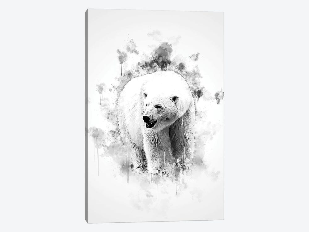Polar Bear In Black And White by Cornel Vlad 1-piece Canvas Art Print