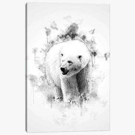 Polar Bear In Black And White Canvas Print #CVL152} by Cornel Vlad Canvas Print