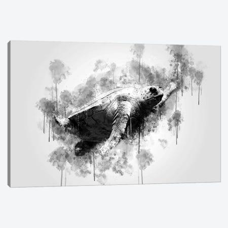 Sea Turtle Canvas Print #CVL153} by Cornel Vlad Art Print