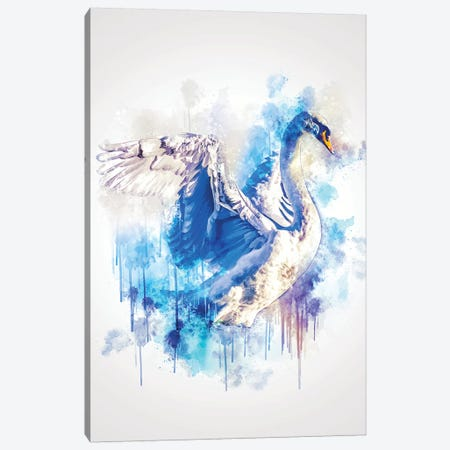 Swan Canvas Print #CVL155} by Cornel Vlad Canvas Art