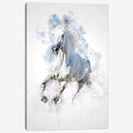 Horse Canvas Print #CVL158} by Cornel Vlad Art Print