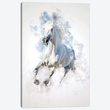 Horse Canvas Print #CVL158} by Cornel Vlad Art Print