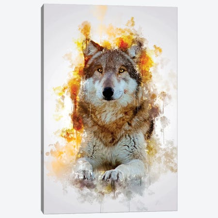 Wolf Canvas Print #CVL160} by Cornel Vlad Canvas Wall Art