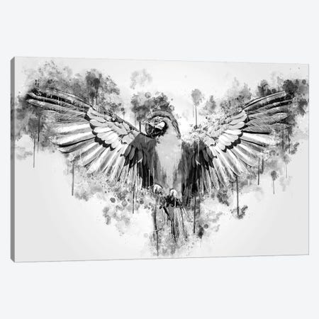 Parrot In Black And White Canvas Print #CVL163} by Cornel Vlad Canvas Wall Art