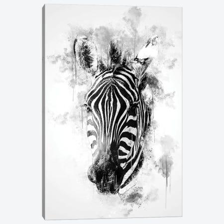 Zebra Head In Black And White Canvas Print #CVL165} by Cornel Vlad Canvas Art Print