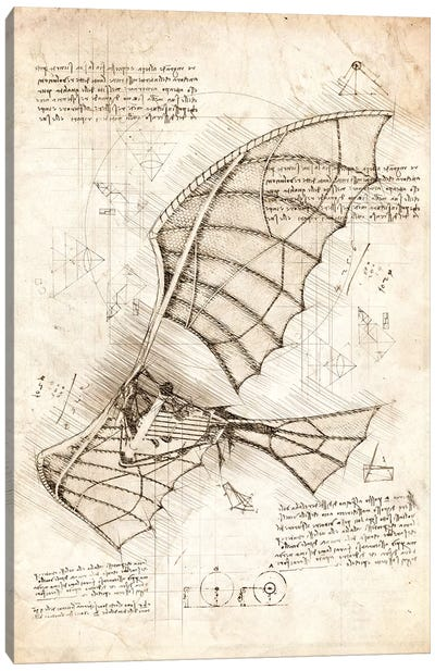 Flying Machine Canvas Art Print