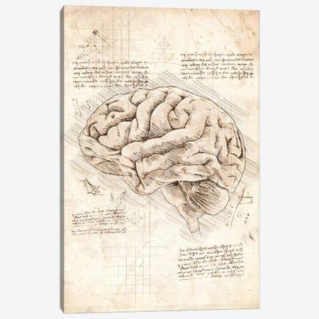 Human Brain Canvas Print #CVL170} by Cornel Vlad Art Print