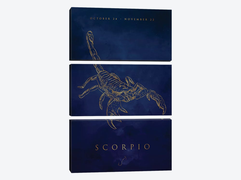 Scorpio by Cornel Vlad 3-piece Canvas Art Print