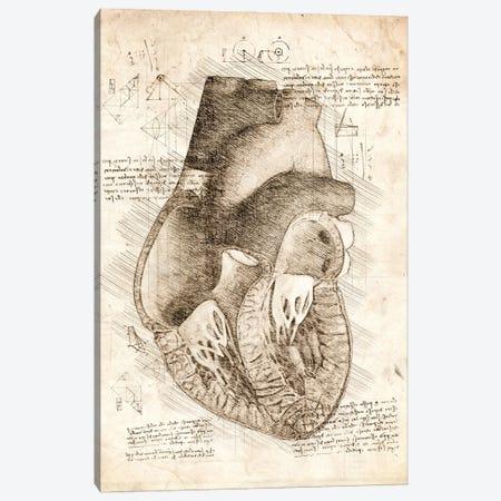 Human Heart Inside View Canvas Print #CVL200} by Cornel Vlad Canvas Art Print