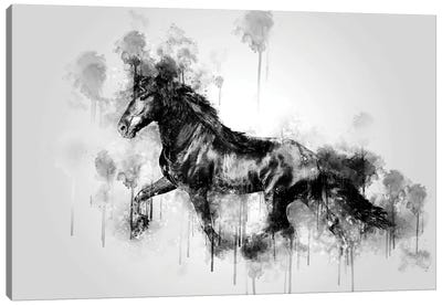 Horse Running Black And White Canvas Art Print