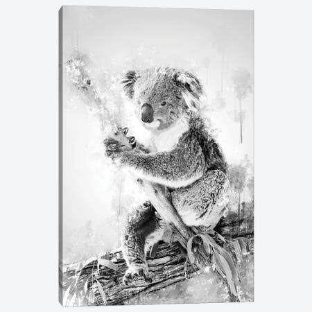 Koala On A Branch Black And White Canvas Print #CVL204} by Cornel Vlad Canvas Wall Art