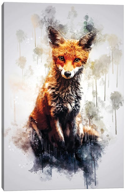 Fox Sitting Canvas Art Print
