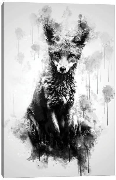 Fox Sitting Black And White Canvas Art Print