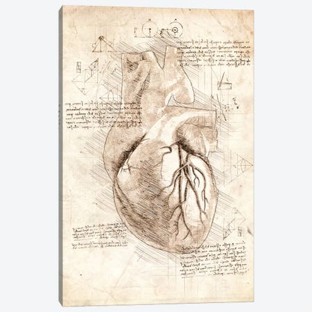 Human Heart Canvas Print #CVL50} by Cornel Vlad Art Print