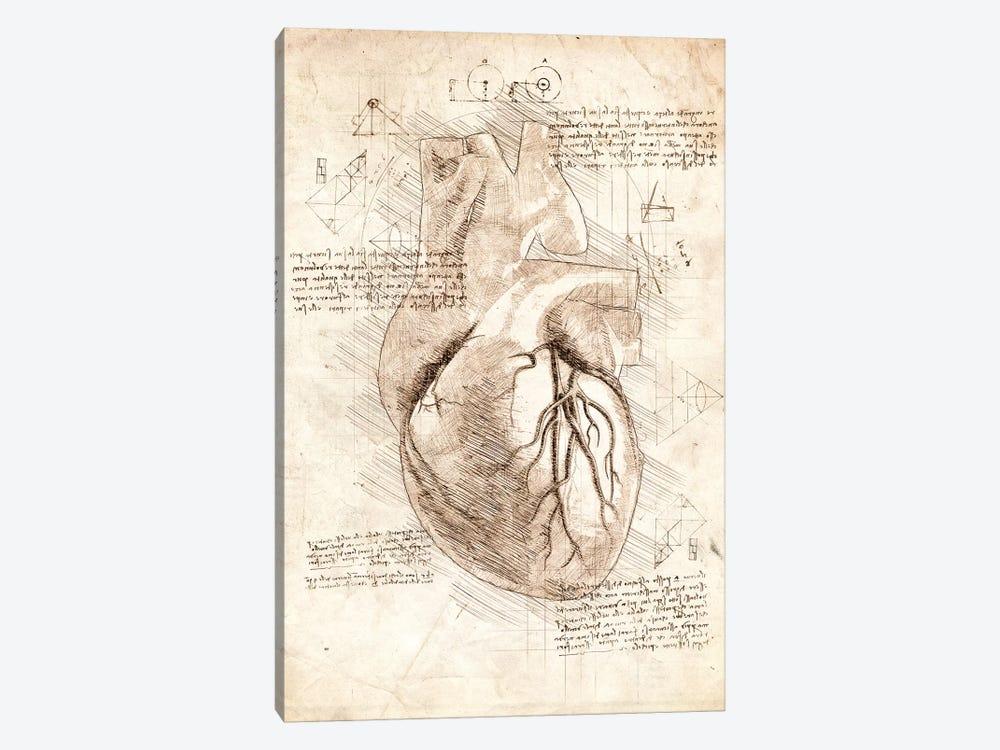 Human Heart by Cornel Vlad 1-piece Canvas Art