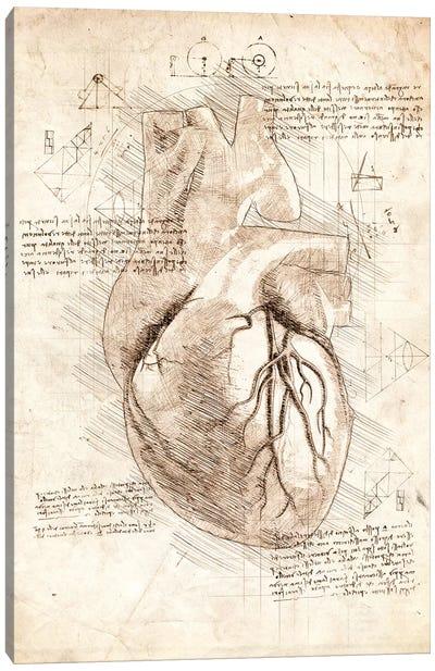 Human Heart Canvas Art Print