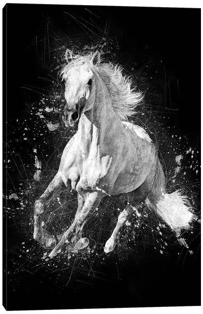 Horse Running Canvas Art Print