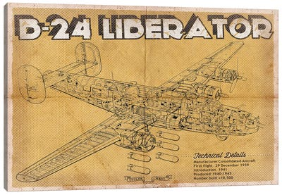 B-24 Liberator Canvas Art Print