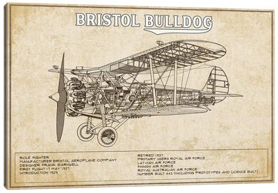 Bristol Bulldog Brown Canvas Art Print