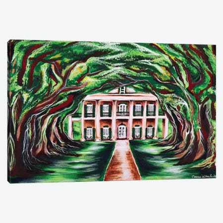Oak Alley Canvas Print #CWH13} by Carrie White Canvas Artwork