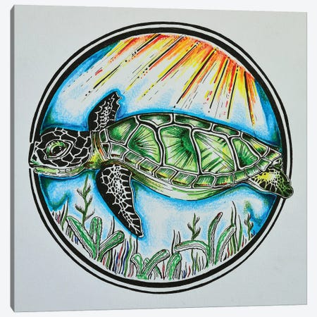 Turtle Canvas Print #CWH28} by Carrie White Canvas Art Print