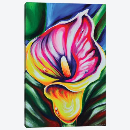 Calla Lily Canvas Print #CWH2} by Carrie White Canvas Artwork