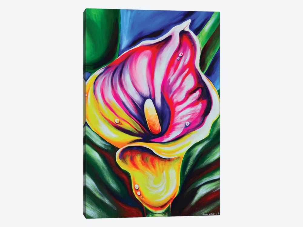 Calla Lily by Carrie White 1-piece Canvas Print