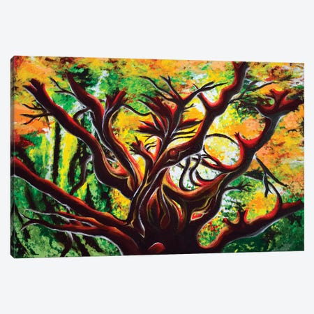 Manzanita Canvas Print #CWH8} by Carrie White Canvas Wall Art