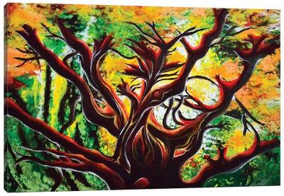 Manzanita Canvas Art Print