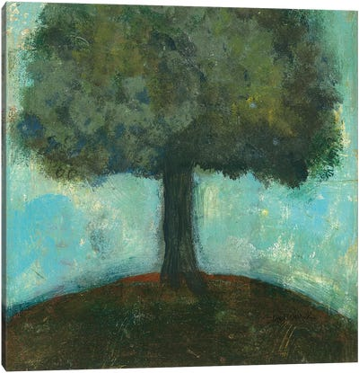 Under the Tree Square II Canvas Art Print